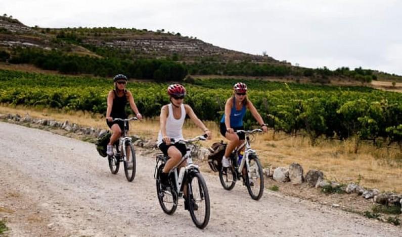 La Junta aumenta la ayuda económica a las Rutas del Vino certificadas de Castilla y León hasta los 230.000 euros para favorecer la reactivación del enoturismo