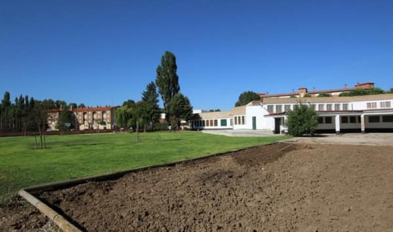 El Ayuntamiento de Burgos aprueba un Plan de Gestión de Arbolado del Parque del Parral