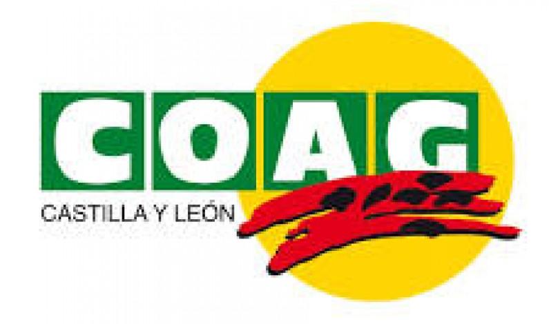 COAG Castilla y León pide a la Junta que ejerza el necesario control de la fauna silvestre para evitar daños en las explotaciones agrícolas y ganaderas