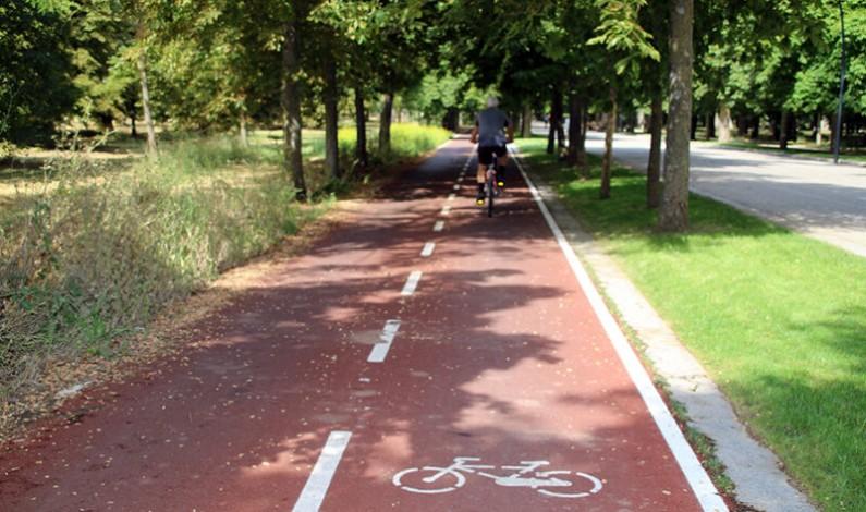 Licencias plantea reestructurar la circulación de la calle Vitoria para añadir un nuevo carril bici