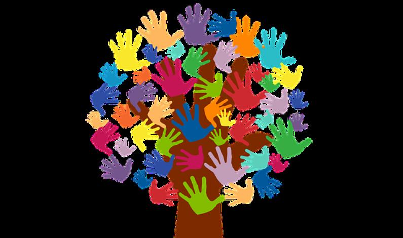 """La Fundación Caja de Burgos y la Fundación """"La Caixa"""" conceden ayudas a 36 proyectos de voluntariado ambiental"""