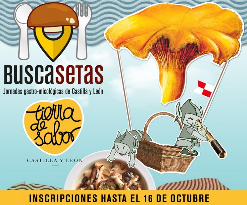 30 restaurantes de Burgos participan en las Jornadas Gastro-Micológicas 'Buscasetas 2020'