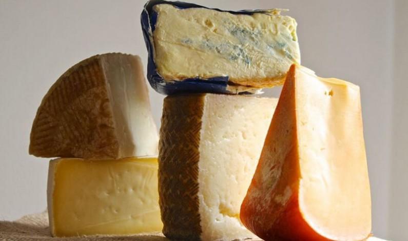 Más de 70 prescriptores queseros han participado en la primera edición de 'El mejor cheesemonger de España', concurso promocionado por Tierra de Sabor