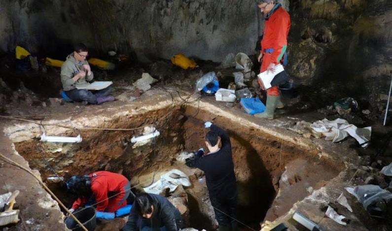 Consiguen por primera vez extraer y analizar el ADN nuclear neandertal en Atapuerca