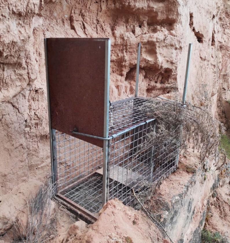Agentes Medioambientales desactivan una trampa en la Ribera del Duero