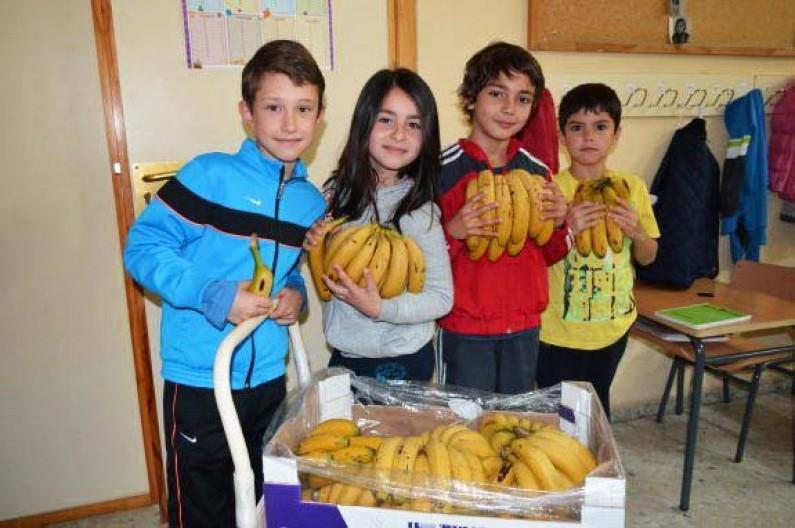 CyL subvenciona el suministro y distribución de frutas y hortalizas en centros escolares