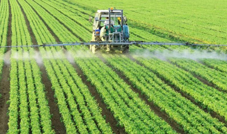 La Junta destina más de 14 millones de euros para ayudas en el sector agrario y alimentario