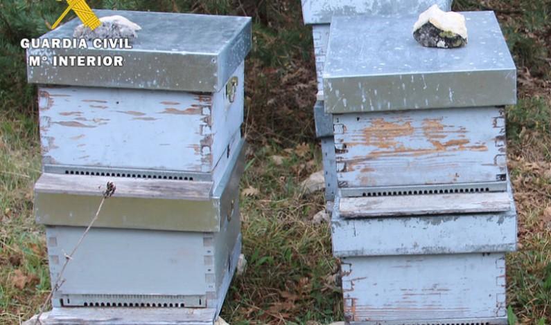 La Guardia Civil investiga a dos personas por el hurto de 6 colmenas