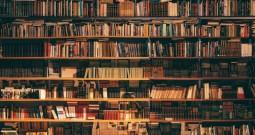 Los hábitos de lectura y los libros favoritos de los españoles, entre traducciones y best-sellers