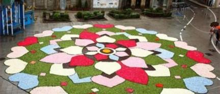 Los alfombristas de Ponteareas ofrendarán una alfombra de flores a Santa María La Mayor