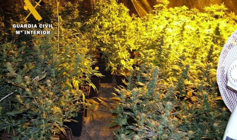 La Guardia Civil desmantela una plantación «indoor» de marihuana con 85 plantas