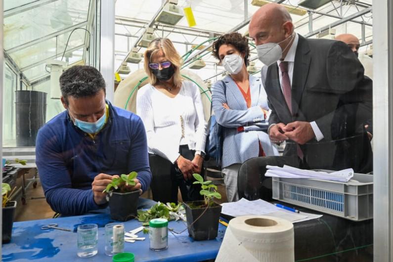 CyL presenta el Plan Estratégico de Dinamización de la investigación agraria y agroalimentaria