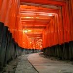 Kyoto FushimiInari Large
