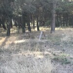 Campo Lilaila (2)
