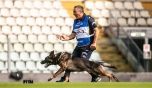 Trabajo con los perros pastor alemán