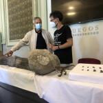 Presentación excavación dinosaurios Salas de los Infantes